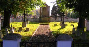 Brzostek – cmentarz z I wojny światowej nr 223