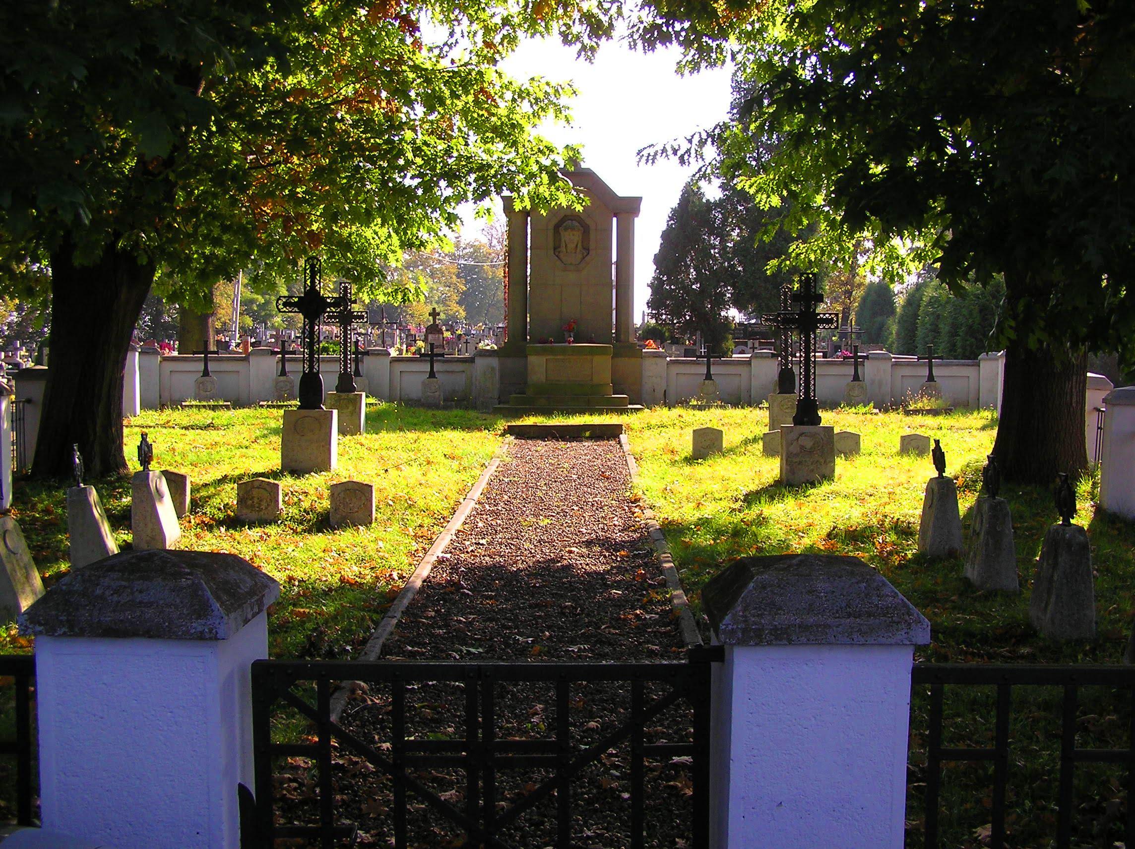 Brzostek – cmentarz zIwojny światowej nr223